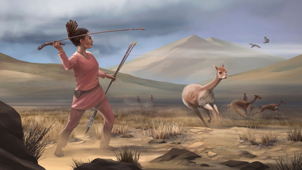 Woman the hunter: Ancient Andean remains challenge old ideas of who speared big game
